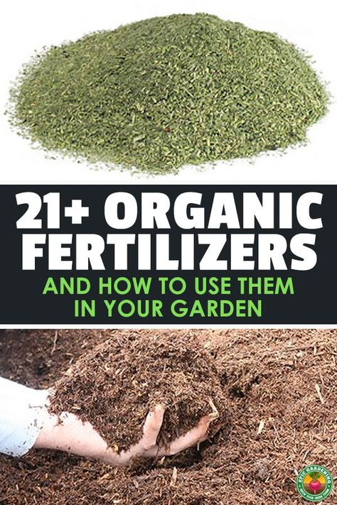 21+ Organic Fertilizers and How To Use Them In Your Garden | Epic Gardening
