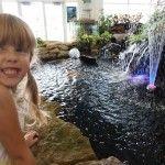Aquarium Adventure at Sawmill Road and 161