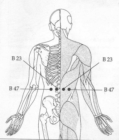 Sea Of Vitality Acupressure Points For Stomach Problem