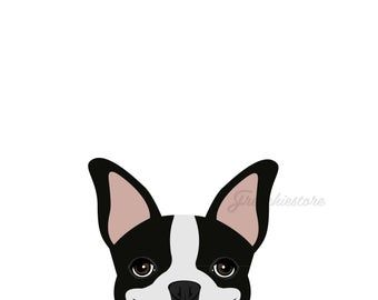 This Item Is Unavailable In 2020 Boston Terrier Dog Boston Terrier Terrier