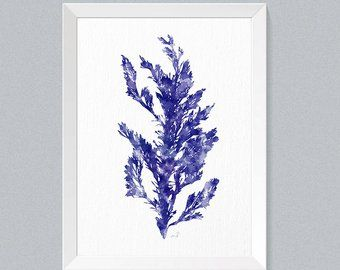 Coastal Wall Art Blue Seaweed Print Watercolor Set Of 6 Etsy Botanical Prints Bathroom Wall Art Coastal Wall Art