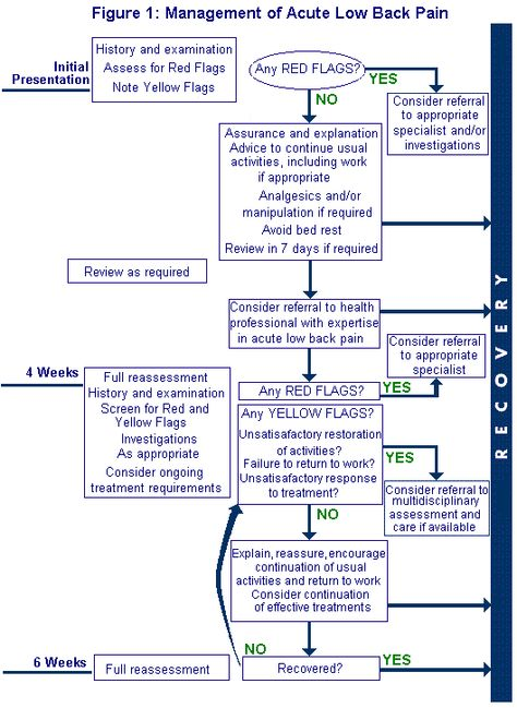 Acute Lower Back Pain Treatment Clinical Guideline on the - return to work note