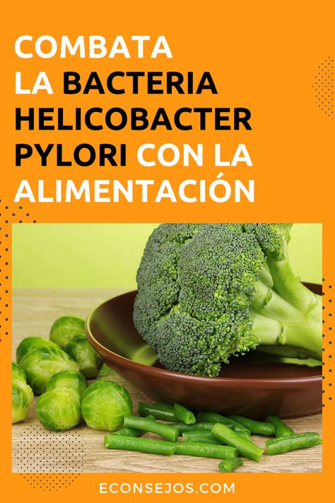 sintomas bacteria helicobacter pylori remedios caseros