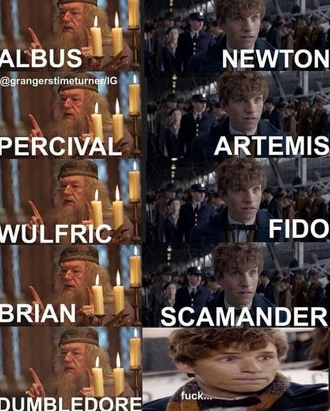 Sorry Newt, Perkamentus heeft een langere naam