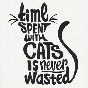 funny cat quotes Source by videos wallpaper cat cat memes cat videos cat memes cat quotes cats cats pictures cats videos I Love Cats, Cute Cats, Funny Cats, Pretty Cats, Cat Posters, Quote Posters, Paper Embroidery, Embroidery Designs, Funny Embroidery