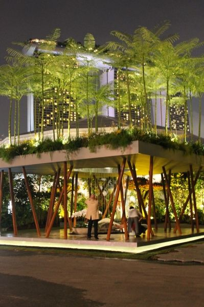 Sacred Grove by Gavin McWilliam and Andrew Wilson. Winner of Gold and Best in Show at the Singapore Garden Festival 2014.