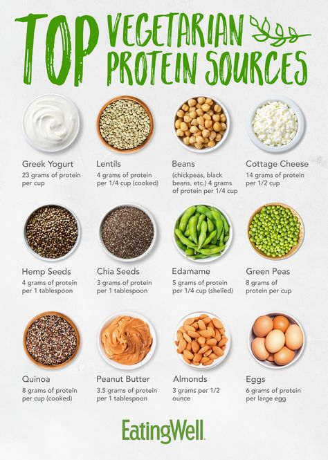 chart of top vegetarian protein sources