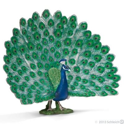 Peacock at theBIGzoo.com, a toy store with over 12,000 products.