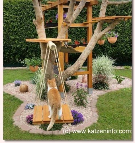 Arbre A Chat Exterieur Bois