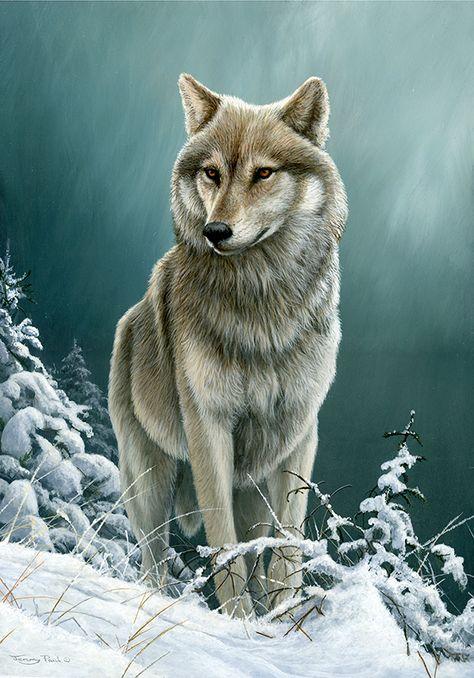 wolf on the ridge by Jeremy Paul