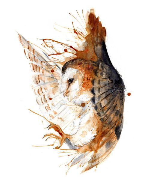 Barn Owl O Ka Fee RubisFirenos Coffee/Pigments/Watercolor 2016 http://ift.tt/2bzlgLM