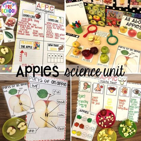 Apple science unit for preschool, pre-k, and kindergarten #preschoolscience #sciencecenter #prekscience #kindergartenscience