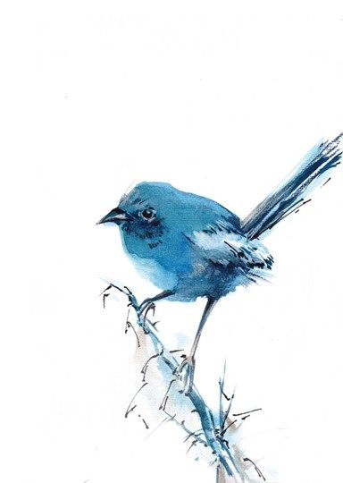 Sophia Rodionov Blue Bird In 2020 Watercolor Bird Bluebird