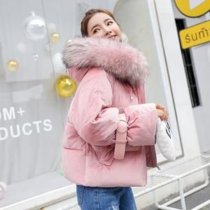 e2feb0030 2019 New Short Winter Jacket Women Thickening Warm Outerwear Parkas ...