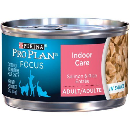 Pets Canned Cat Food Salmon Rice Cat Food