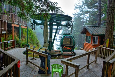 """Ride this sky trail through the breathtaking California Redwoods, which we first wrote about in """"Everyone In Northern California Needs To Take This Unforgettable Gondola Ride. Northern California Travel, California Vacation, California Coast, California Dreamin', Santa Cruz California, Klamath California, Lake Arrowhead California, Capitola California, California Destinations"""