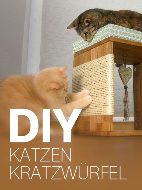 Katzenmöbel / Kratzwürfel für Katzen selber bauen - DIY Anleitung    Your house is your castle, and with a few do-it-oneself ingenuity you'll be able to renovate your home with astonishing creativeness. All you will need is the proper Do-it-yourself instruments plus some inspiration to get you begun.    Which happen to be the responsibilities that are appropriate for Do-it-yourself house improvement? Virtuall... #bauen #für #Katzen #Katzenmöbel #Kittens diy furniture #Kratzwürfel #selber