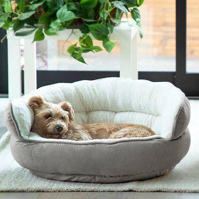 Best Friends By Sheri Throne Cuddler Bolster Cat Dog Bed Dark Chocolate Mini Chewy Com