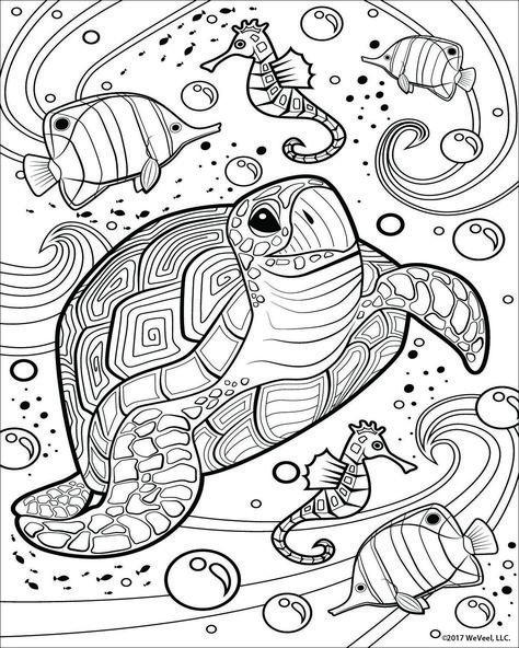 240 turtleideen in 2021  meeresschildkröte