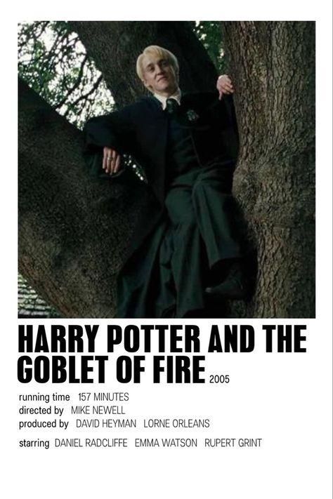 harry potter and the goblet of fire by issy