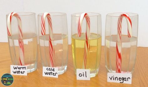 candy cane Christmas science experiment Best Picture For kids science experiments For Your Taste You Science Experiments Kids, Science Lessons, Science For Kids, Science Fun, Physical Science, Preschool Lessons, Earth Science, Stem Projects, Science Fair Projects