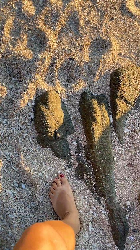 Visit Sea in Croatia, go to Palawan, Philippines, or sunbathe on the Havelock Island, Andaman Islands: Best Beach Destinations 2021