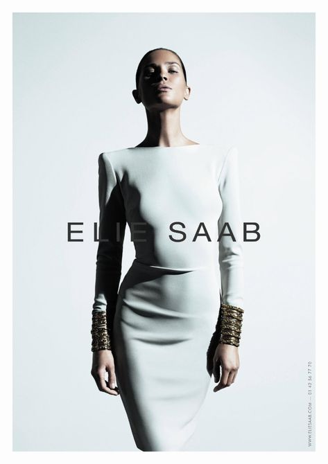 Elie Saab Spring 2011 Campaign  Model: Erin Wasson  Photographer: Willy Vanderperre