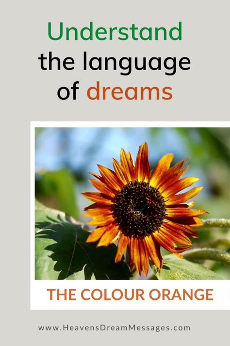 Dreaming of orange? Discover the spiritual meaning of the colour orange for Christians. Learn the positve and negative meanings and what this means for you. + real dream examples. dream intrerpretation | dream symbol | bible | colours #dreams #dreamsymbols