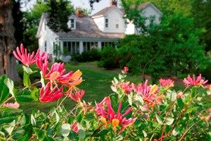 """Chesapeake Arboretum - 48 beautiful acres. You're sure to find the perfect location to say """"I do."""" Chesapeake, VA"""