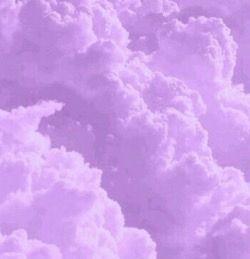 Foto Aesthetic Lilac Gambar Wallpaper Foto