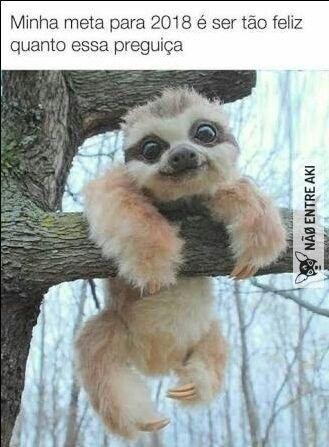 Pin By Jojoenjo On Memes Cute Baby Sloths Baby Animals Funny Cute Funny Animals