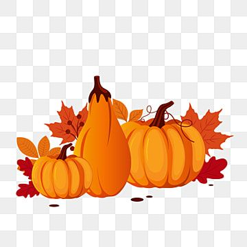 Happy Thanksgiving Illustration With Pumpkin November Illustration Pumpkin Png And Vector With Transparent Background For Free Download Pumpkin Art Happy Halloween Witches Thanksgiving Greetings