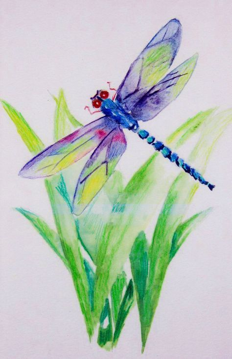 Best Tattoo Watercolor Butterfly Dragonfly Art 21+ Ideas