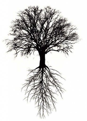 Tree Roots Drawing Tattoo Life 54 Ideas Drawing Ideas Life Roots Tattoo Tree In 2020 Tree Roots Tattoo Celtic Tree Tattoos Tree Of Life Tattoo