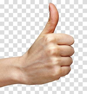 Person Doing Ok Hand Sign Thumb Signal Hand Thumb Up Hand Transparent Background Png Clipart Ok Hand Sign Hand Logo Clip Art