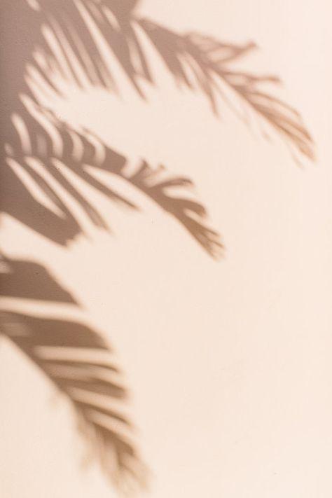 Palm Beach Travel Guide — Abby Capalbo - Photography, Landscape photography, Photography tips Cream Aesthetic, Brown Aesthetic, Beach Aesthetic, Aesthetic Collage, Aesthetic Photo, Aesthetic Pictures, Simple Aesthetic, Photography Aesthetic, Aesthetic Colors