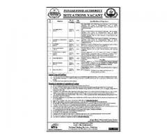 Punjab Food Authority Jobs 2019 in Lahore Via NTS Apply Now