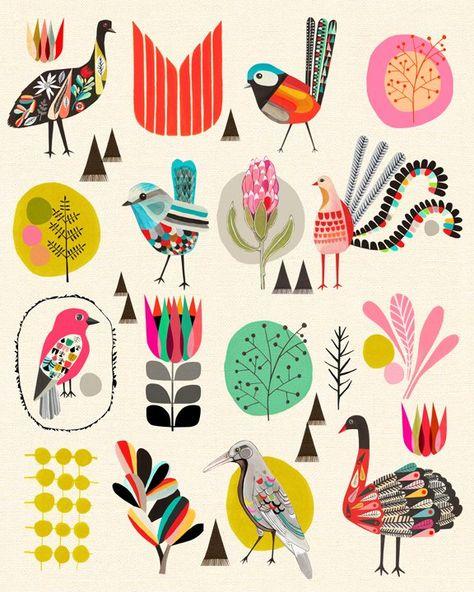 The Birds of Australia  by Kristina Sostarko + Jason Odd  On The Wall