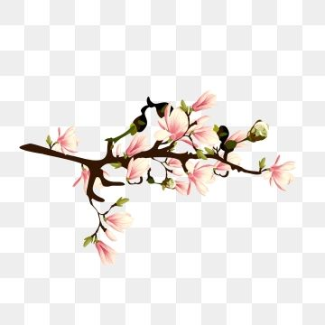 Hand Painted Realistic Wind Decorative Spring Peach Flower Peach Blossom Branch Peach Blossom Flower Png And Vector With Transparent Background For Free Down Peach Flowers Flower Png Images Spring Illustration