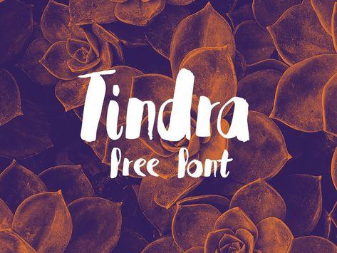 Tindra Font  @Befonts