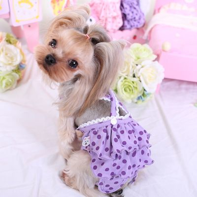 Mko Maiko Teddy Vip Pet Dog Cake Series Menstrual Physiological Trousers In 2020 Pet Clothes Dog Diapers Pet Dogs