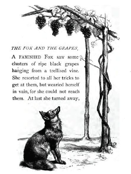 a fox and grapes