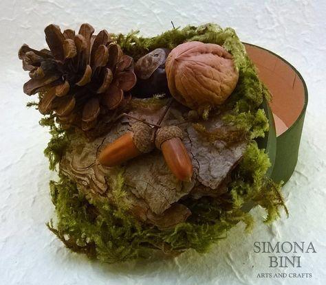Scatola verde con muschio pigna ghiande noce e corteccia