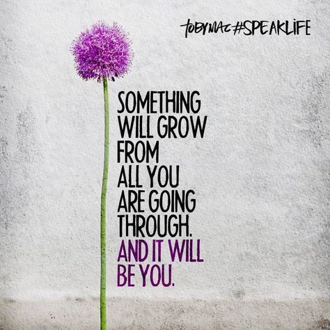 Something will grow from all you are going through and it will be you.