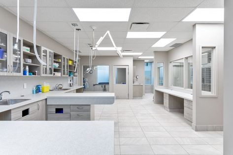 Oak West Animal Clinic In 2020 Pet Clinic Veterinary Clinic Hospital Design
