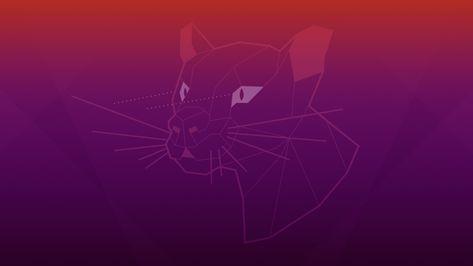 Ubuntu 20.04 Focal Fossa Default Desktop Wallpapers