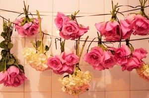 Como Secar Flores Floral Wreath Flowers Flower Art