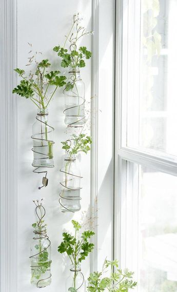 Indoor Wall Planter Ideas