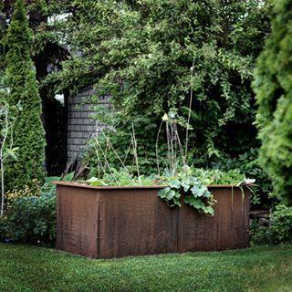 5 Tipps Fur Gurken Aus Dem Eigenen Garten Gruneliebe In 2020 Gemusegarten Tipps Pflanzen Garten Anpflanzen