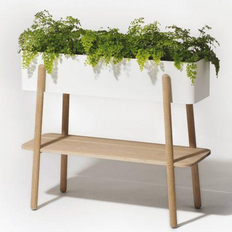 Nos Meilleures Idees Pour Une Decoration Vegetale Tendance